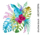watercolor tropical bouquet... | Shutterstock . vector #682493896