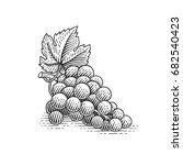 grapes. hand drawn engraving... | Shutterstock .eps vector #682540423
