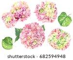 flowers hydrangea set ... | Shutterstock . vector #682594948