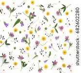 Stock photo flower pattern of wildflowers composition of flowers and plants top view floral abstract 682602280