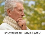 elderly man in park | Shutterstock . vector #682641250