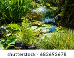 beautiful pond with green... | Shutterstock . vector #682693678
