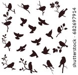 Stock vector vector set of birds and twigs decorative bird silhouette 682697914