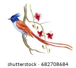 Stock photo a bird of paradise on a branch of an exotic plant with flowers watercolor drawing on a white 682708684