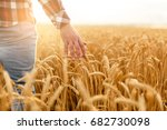 farmer touching his crop with... | Shutterstock . vector #682730098