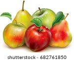 apples and pears of red and... | Shutterstock .eps vector #682761850
