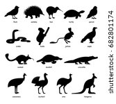 set of australian animals and... | Shutterstock .eps vector #682801174