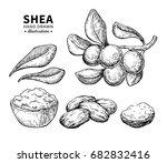 shea butter vector drawing.... | Shutterstock .eps vector #682832416