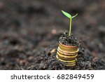 young plant growing on stacks... | Shutterstock . vector #682849459