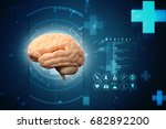 human brain 3d illustration | Shutterstock . vector #682892200