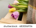 spring bouquet.flowers tulips... | Shutterstock . vector #683006956