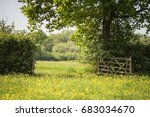 english countryside landscape... | Shutterstock . vector #683034670