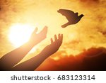 man praying and free bird... | Shutterstock . vector #683123314