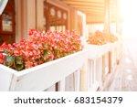 Street Cafeteria Flowers Pot...