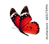beautiful red monarch butterfly ... | Shutterstock . vector #683175994
