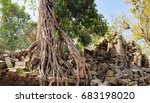 Small photo of A large tree trunk of an old tropical tree growing near Prasat Beng Mealea in Angkor Complex, Siem Reap, Cambodia. Ancient Khmer architecture, World Heritage