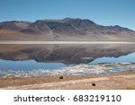 salar de tara  atacama desert ... | Shutterstock . vector #683219110