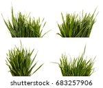 a bunch of green grass.... | Shutterstock . vector #683257906