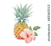 watercolor picture of pineapple ... | Shutterstock . vector #683365513