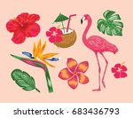 tropical collections...   Shutterstock .eps vector #683436793