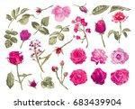 elegant decorative vector rose... | Shutterstock .eps vector #683439904
