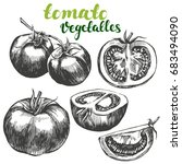 tomato vegetable set hand drawn ... | Shutterstock .eps vector #683494090