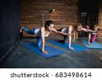 group of girls doing exercises... | Shutterstock . vector #683498614