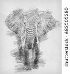 elephant. black and white...   Shutterstock . vector #683505280