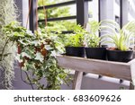 home and garden concept of... | Shutterstock . vector #683609626