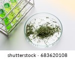 powder of cannabis  drugs  ... | Shutterstock . vector #683620108