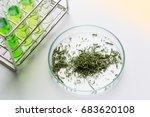 powder of cannabis  drugs  ... | Shutterstock . vector #683620108
