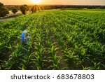 top view. a farmer and his son... | Shutterstock . vector #683678803