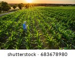 top view. a farmer in his... | Shutterstock . vector #683678980