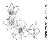 beautiful monochrome black and...   Shutterstock . vector #683714026