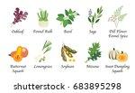 organic nature health vegetable