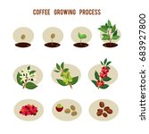 plant seed germination stages.... | Shutterstock .eps vector #683927800