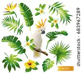 set with tropical leaves ...   Shutterstock .eps vector #683967289