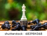 the winner of chess win the... | Shutterstock . vector #683984368