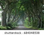 dark hedges  northern ireland | Shutterstock . vector #684048538