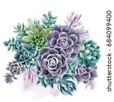 succulents painted with... | Shutterstock . vector #684099400