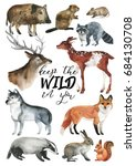 wildlife hand drawn postcard... | Shutterstock . vector #684130708