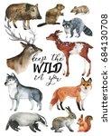 Wildlife Hand Drawn Postcard...
