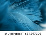 Blue Chicken Feathers In Soft...