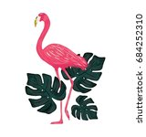 standing flamingo with palm... | Shutterstock .eps vector #684252310