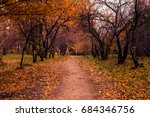 the natural autumn landscape is ... | Shutterstock . vector #684346756