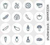 vector illustration of 16 food... | Shutterstock .eps vector #684492334