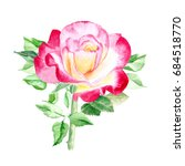 one pink and yellow rose. rose... | Shutterstock . vector #684518770