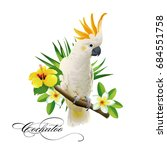 parrot cockatoo on the tropical ... | Shutterstock .eps vector #684551758