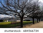 Small photo of Paris, row of trees in winter in front of the Mémorial des Martyrs de la Déportation (Memorial to the Martyrs of the Deportation) on the Square d'Ile de France, at the eastern end of Ile de la Cité.