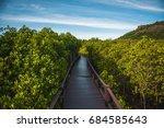mangrove nature trail | Shutterstock . vector #684585643